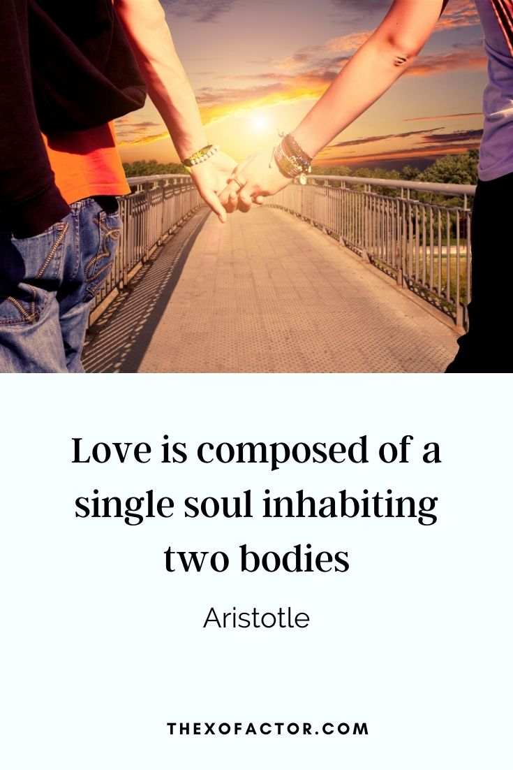 """Love is composed of a single soul inhabiting two bodies"" - Aristotle"