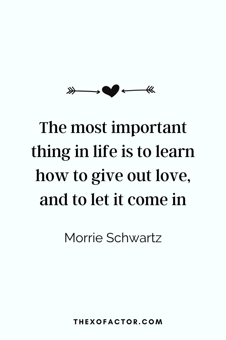 """The most important thing in life is to learn how to give out love, and to let it come in."" Morrie Schwartz"