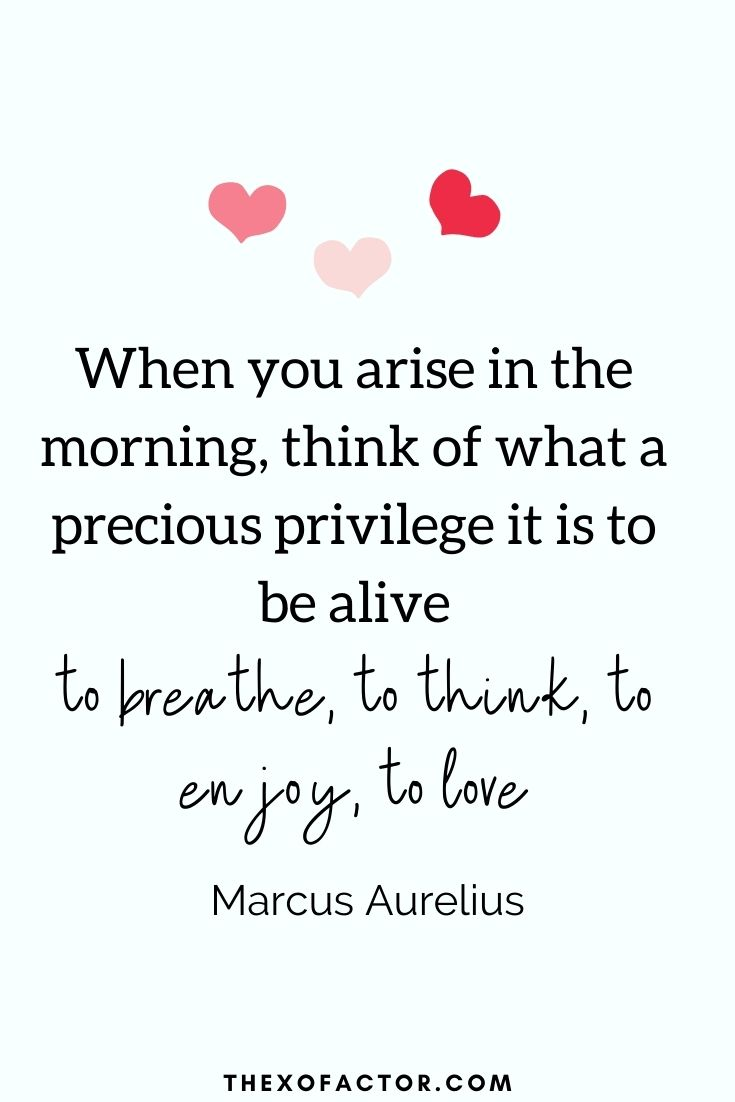 """ When you arise in the morning, think of what a precious privilege it is to be alive – to breathe, to think, to enjoy, to love"" Marcus Aurelius"