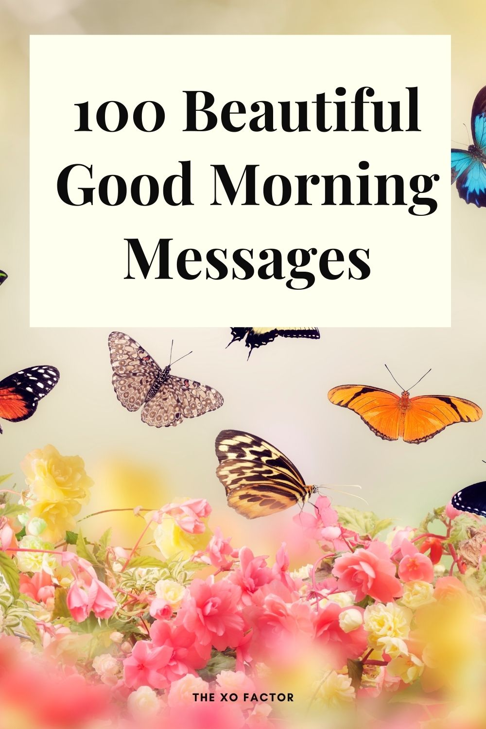 100 beautiful good morning messages