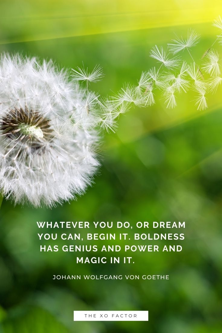 Whatever you do, or dream you can, begin it. Boldness has genius and power and magic in it.      - Johann Wolfgang von Goethe