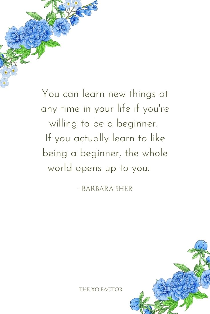 You can learn new things at any time in your life if you're willing to be a beginner. If you actually learn to like being a beginner, the whole world opens up to you.      - Barbara Sher