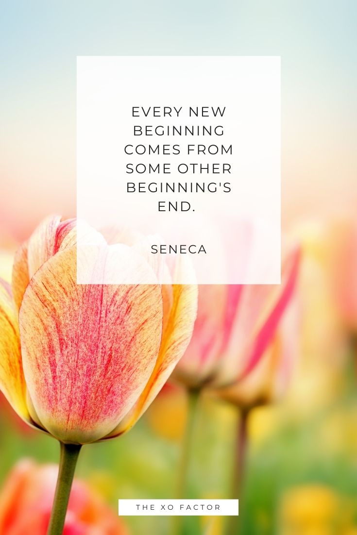 Every new beginning comes from some other beginning's end.   -Seneca