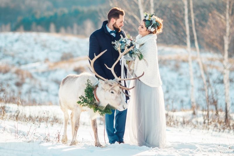 bride and groom with a deer