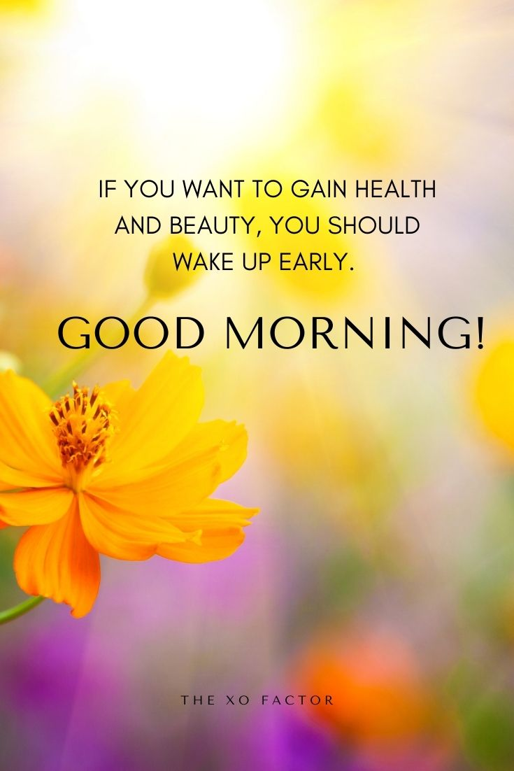 If you want to gain health and beauty, you should wake up early. Good morning!