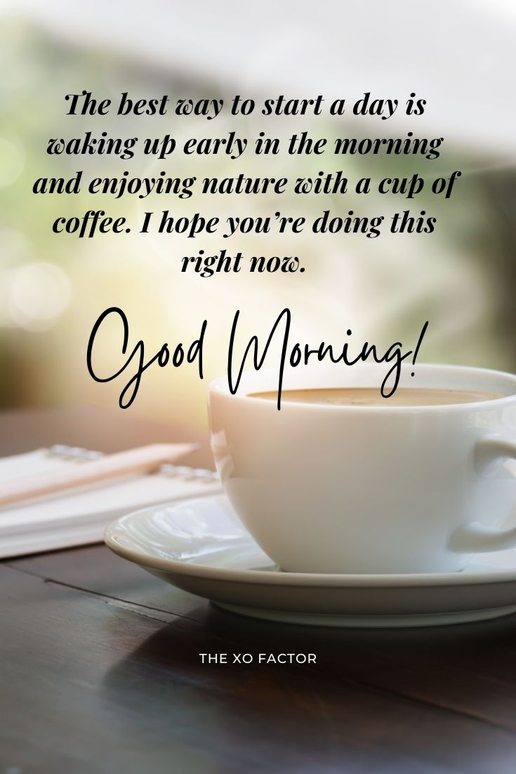 The best way to start a day is waking up early in the morning and enjoying nature with a cup of coffee. I hope you're doing this right now. Good morning!