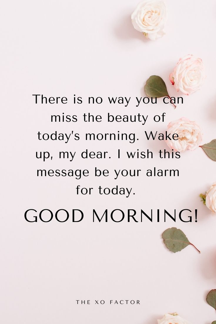 There is no way you can miss the beauty of today's morning. Wake up, my dear. I wish this message be your alarm for today. Good morning!