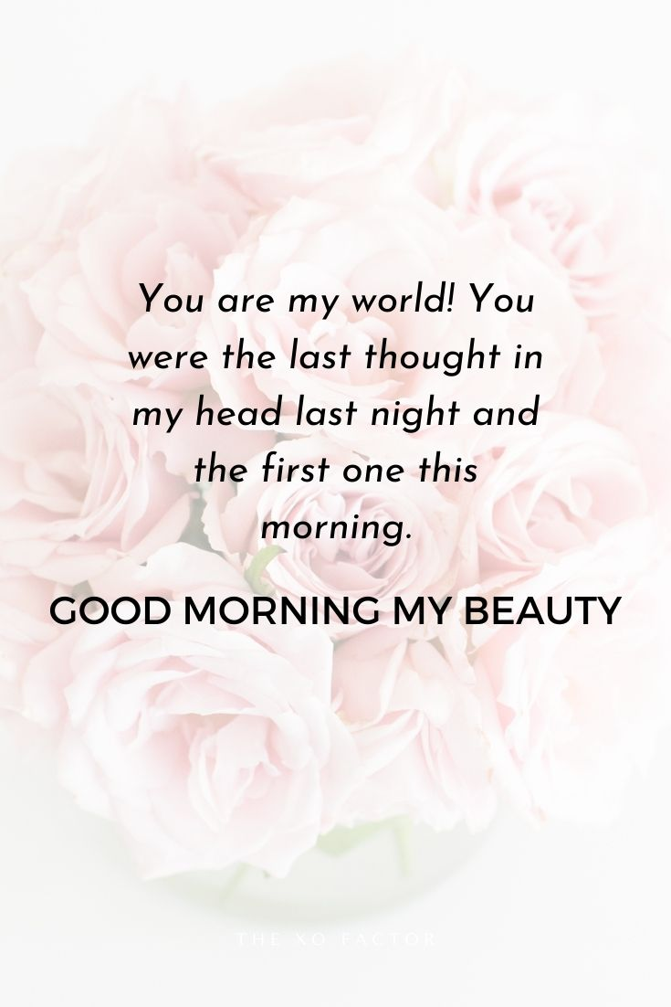 You are my world! You were the last thought in my head last night and the first one this morning. Good morning my beauty.