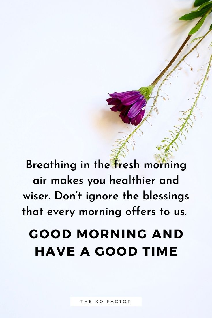 Breathing in the fresh morning air makes you healthier and wiser. Don't ignore the blessings that every morning offers to us. Good morning and have a good time.