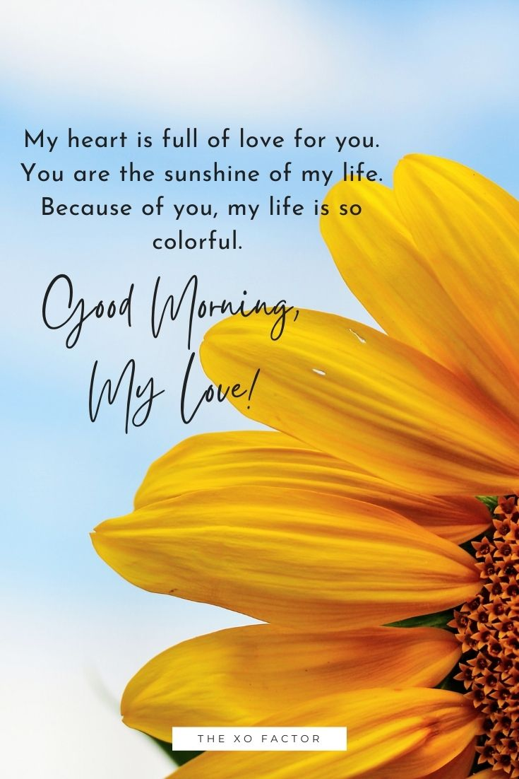 My heart is full of love for you. You are the sunshine of my life. Because of you, my life is so colorful. Good morning, my love!