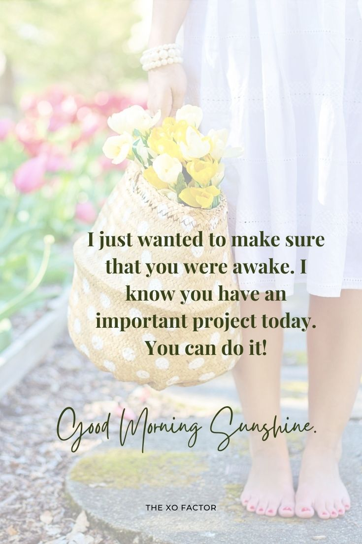 Good morning sunshine. I just wanted to make sure that you were awake. I know you have an important project today. You can do it!