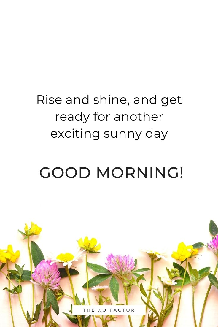 Rise and shine, and get ready for another exciting sunny day! Good morning!