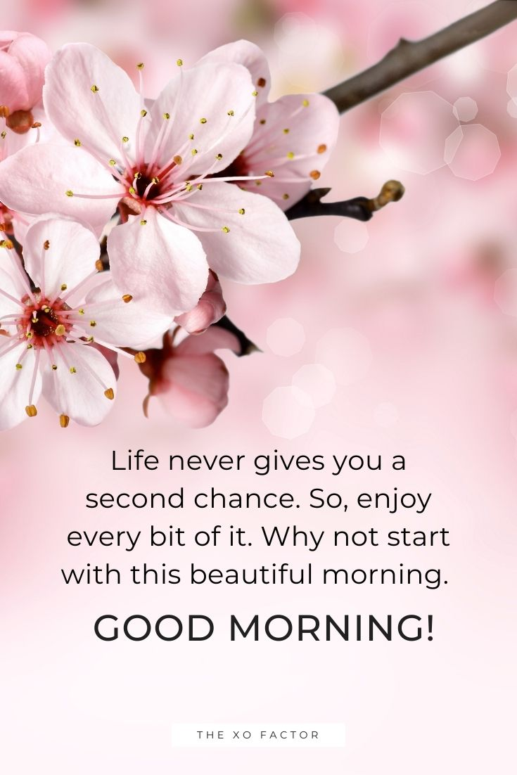 Life never gives you a second chance. So, enjoy every bit of it. Why not start with this beautiful morning. Good morning!