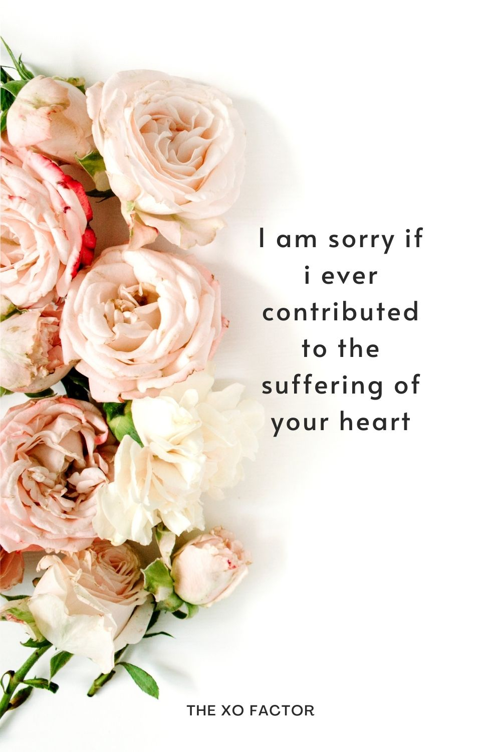 I am sorry if i ever contributed to the suffering of your heart.