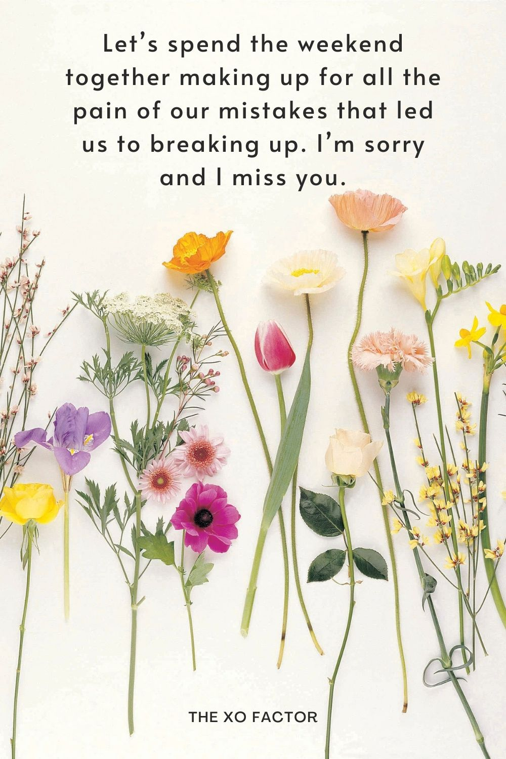 Let's spend the weekend together making up for all the pain of our mistakes that led us to breaking up. I'm sorry and I miss you.