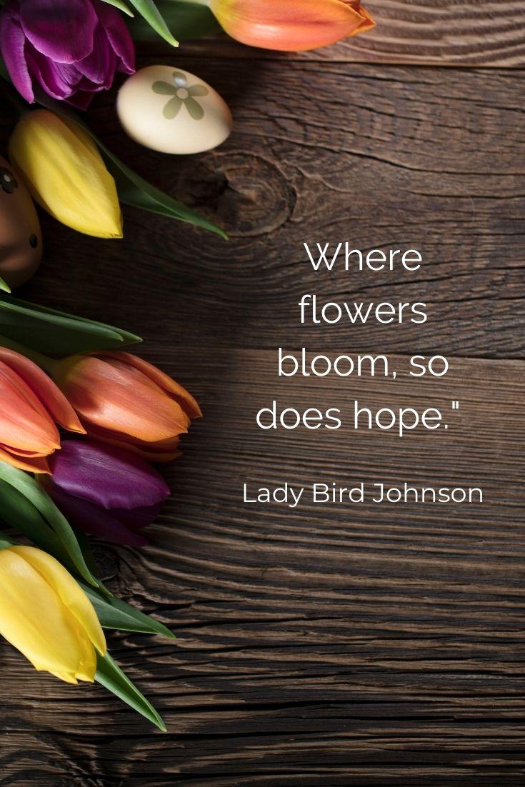 "Where flowers bloom, so does hope."" Lady Bird Johnson"