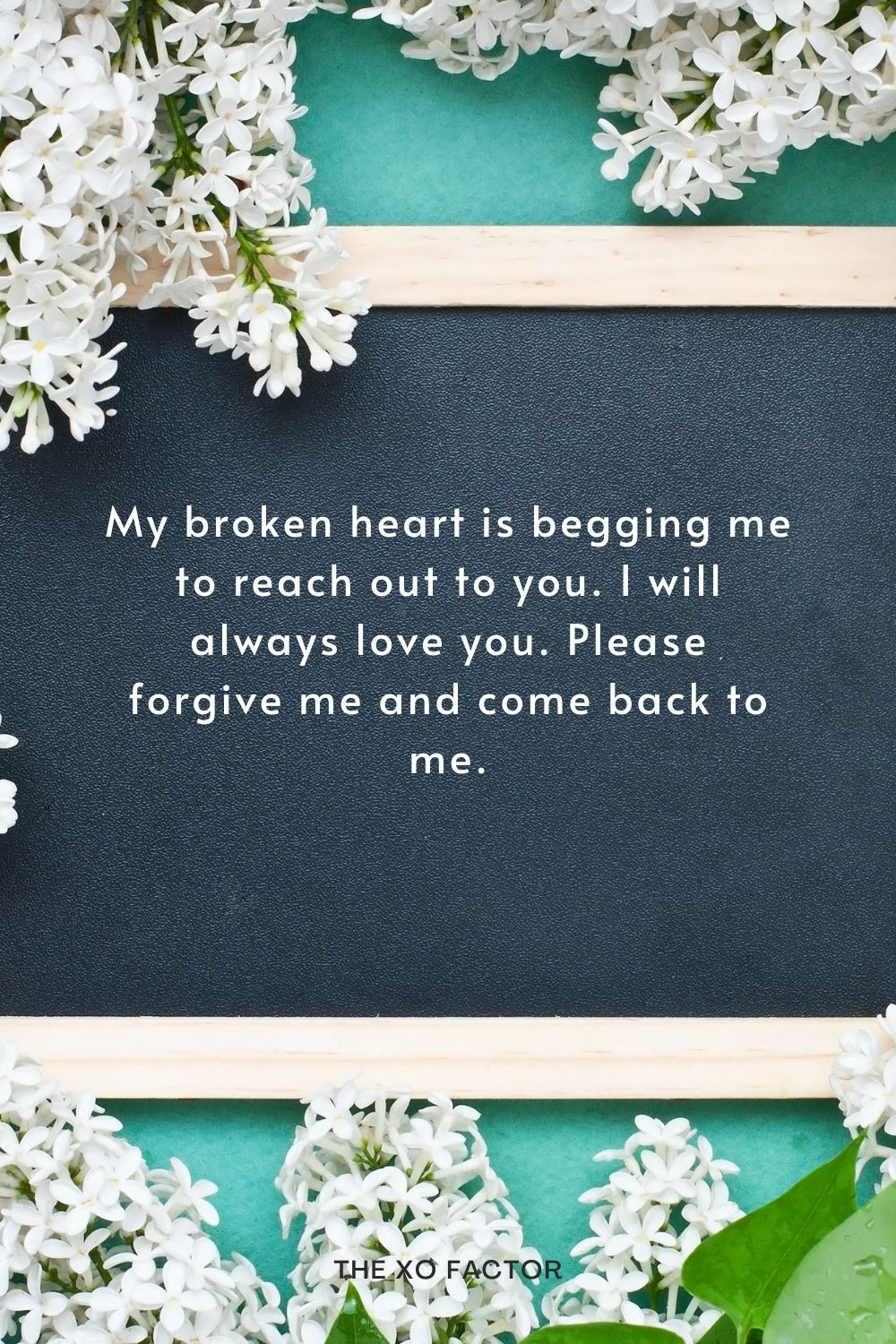 My broken heart is begging me to reach out to you. I will always love you. Please forgive me and come back to me.