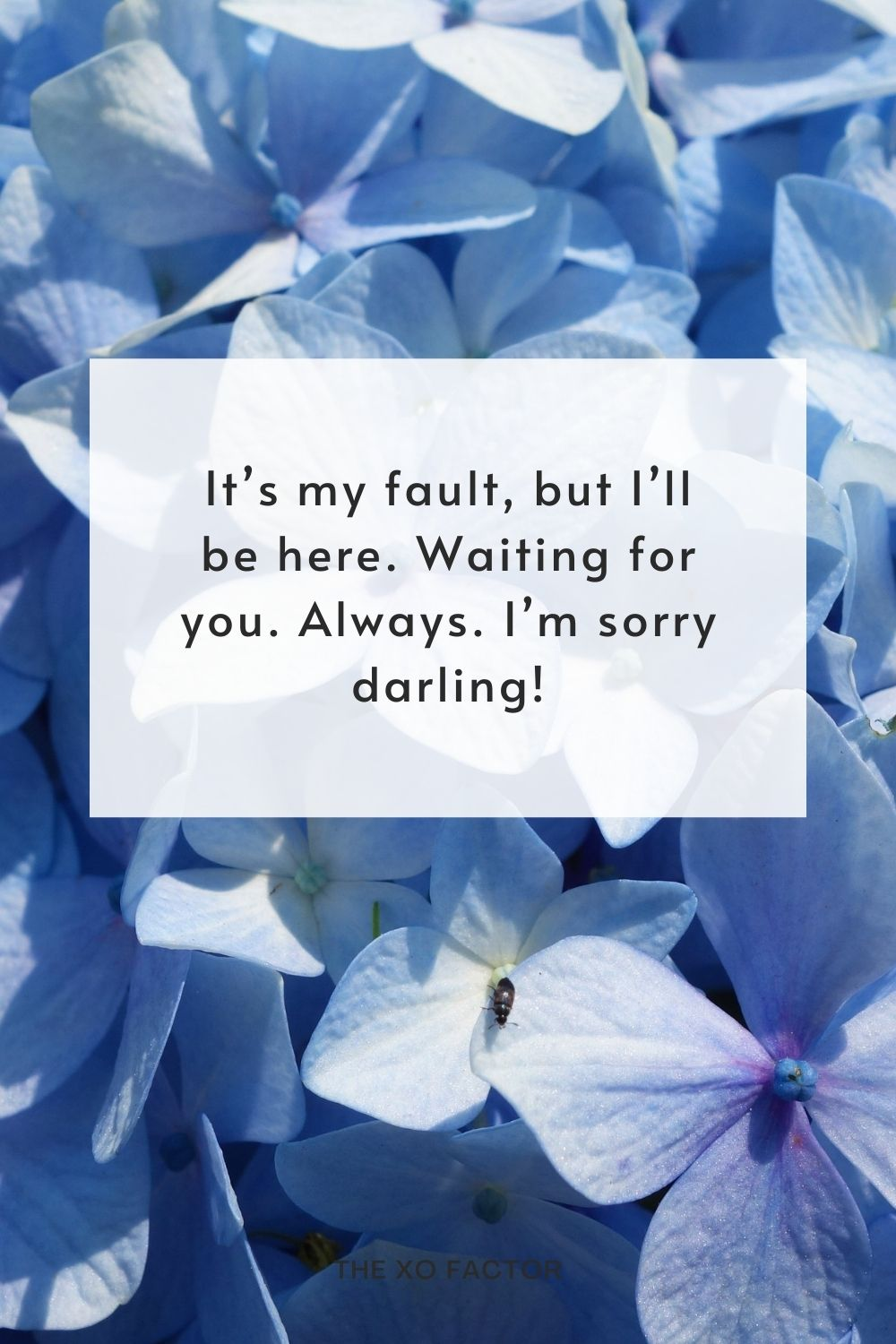 It's my fault, but I'll be here. Waiting for you. Always. I'm sorry darling!