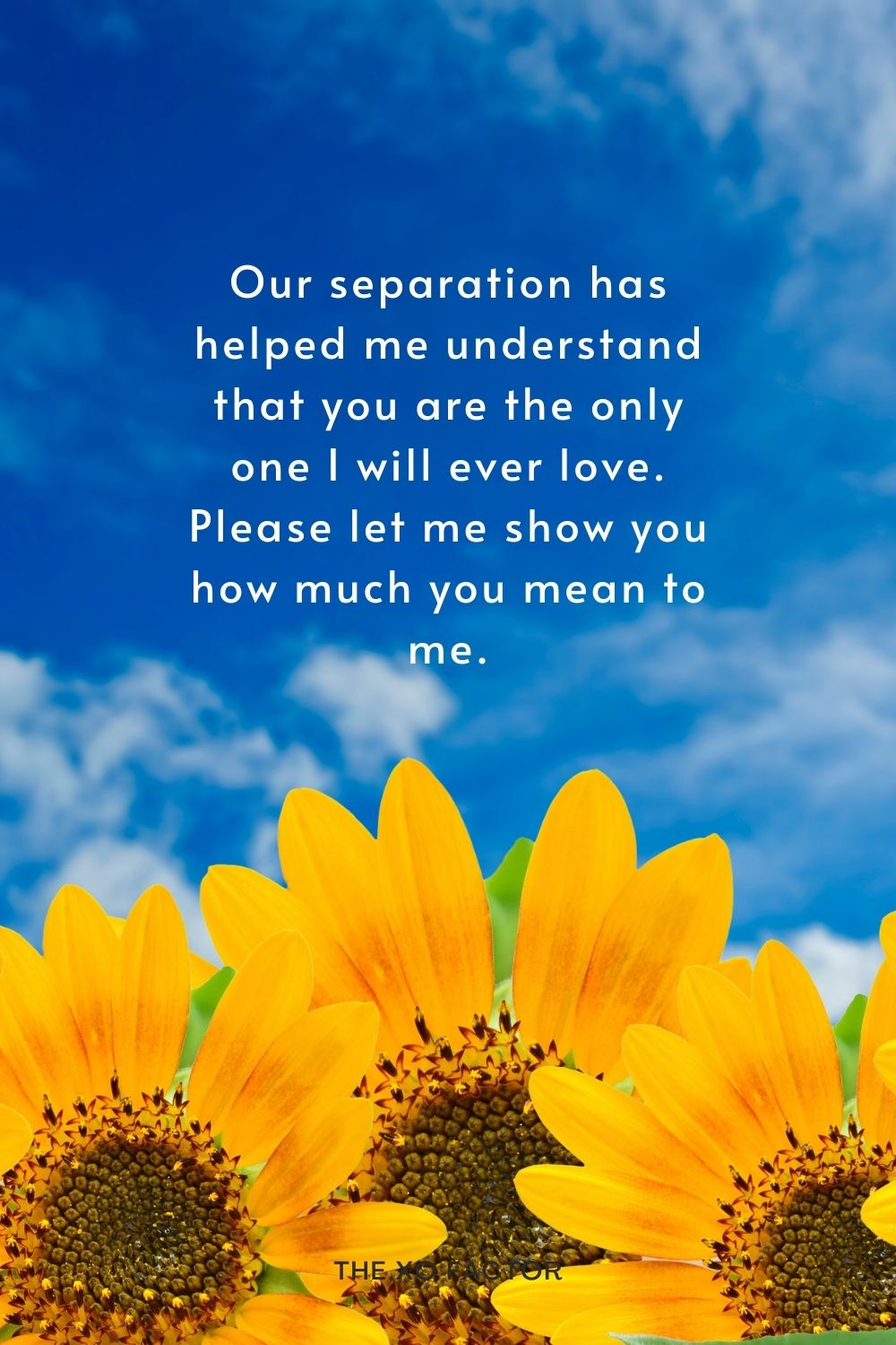 Our separation has helped me understand that you are the only one I will ever love. Please let me show you how much you mean to me.
