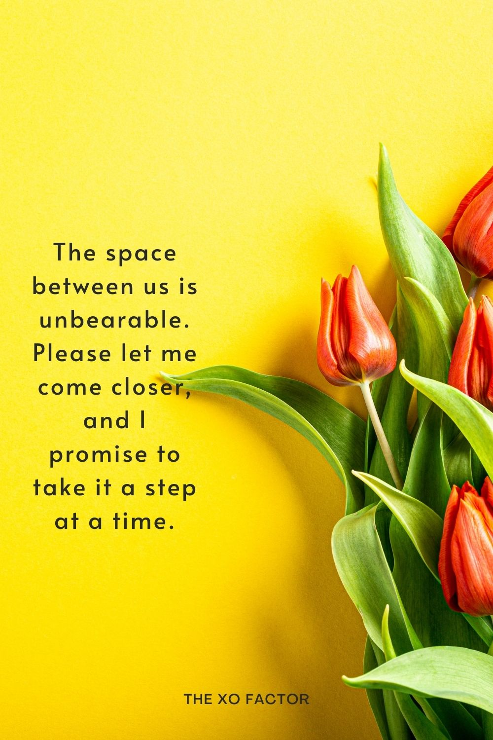 The space between us is unbearable. Please let me come closer, and I promise to take it a step at a time