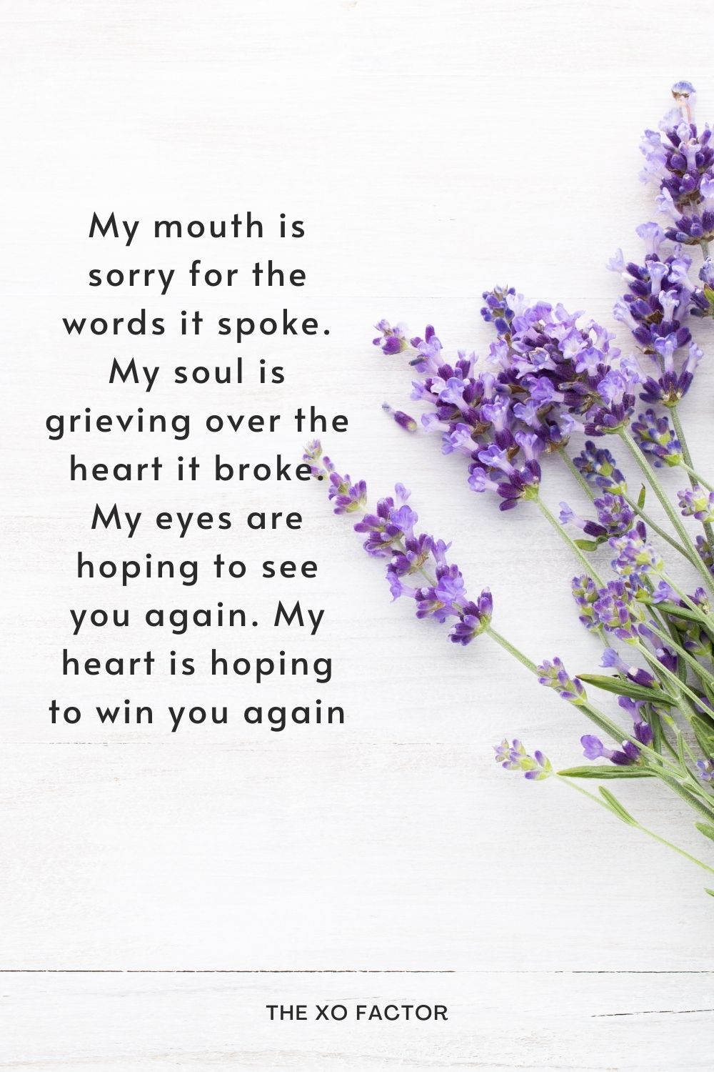 My mouth is sorry for the words it spoke. My soul is grieving over the heart it broke. My eyes are hoping to see you again. My heart is hoping to win you again