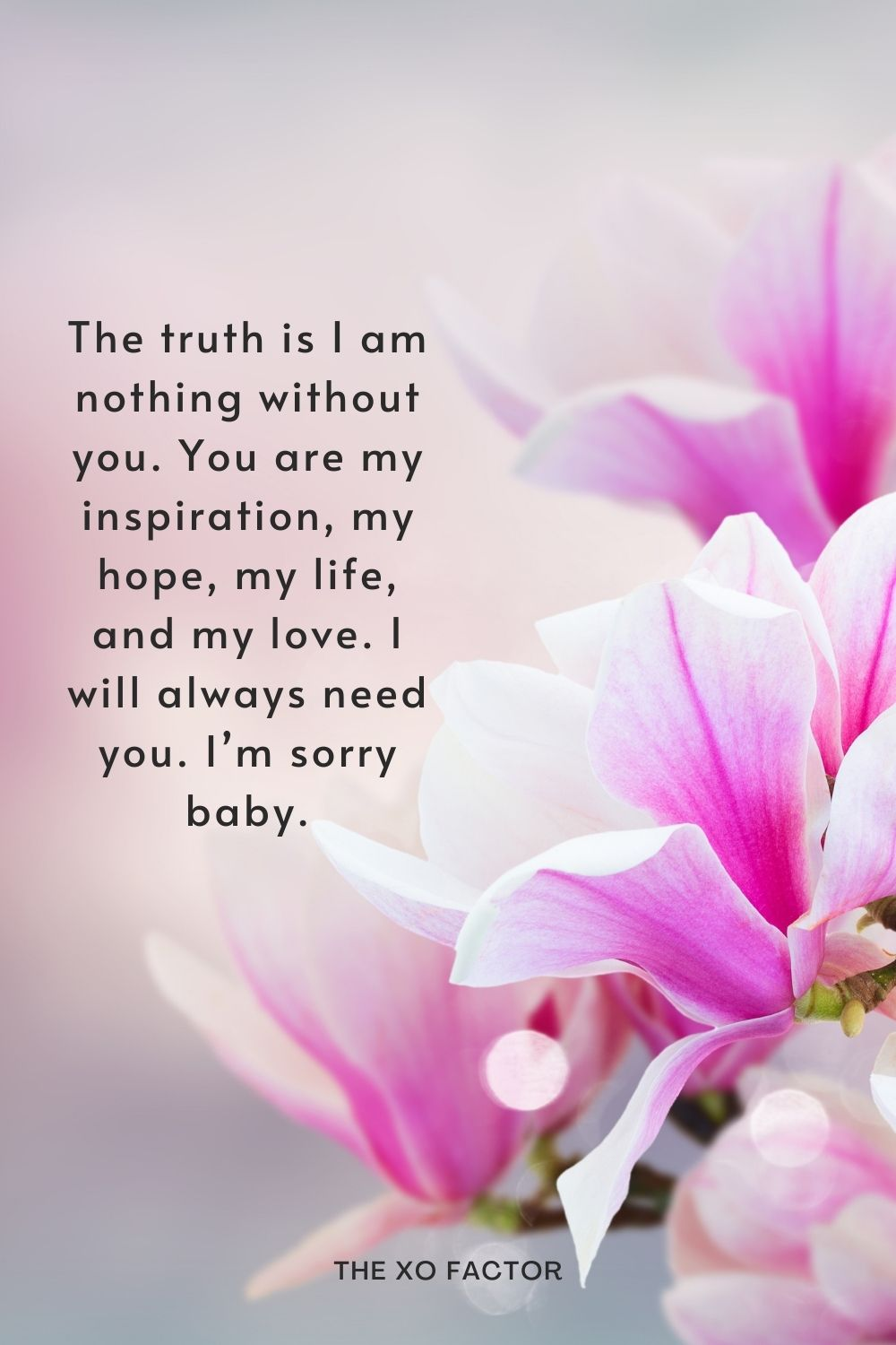 The truth is I am nothing without you. You are my inspiration, my hope, my life, and my love. I will always need you. I'm sorry baby.