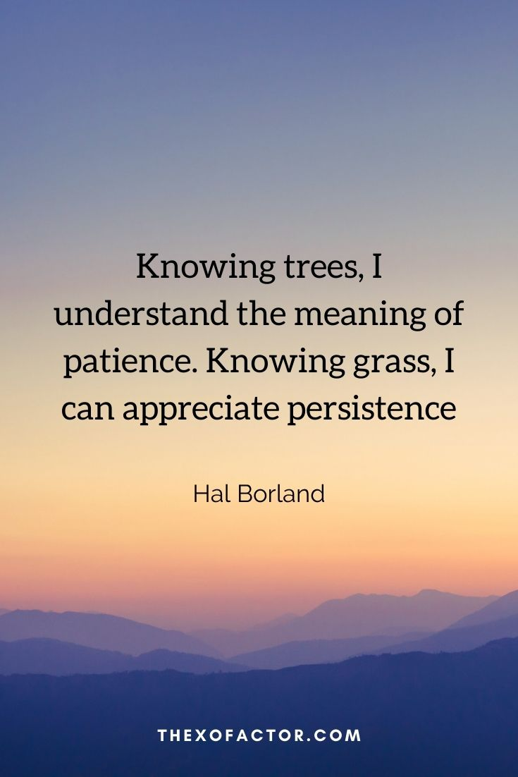 """Knowing trees, I understand the meaning of patience. Knowing grass, I can appreciate persistence."""" Hal Borland"""