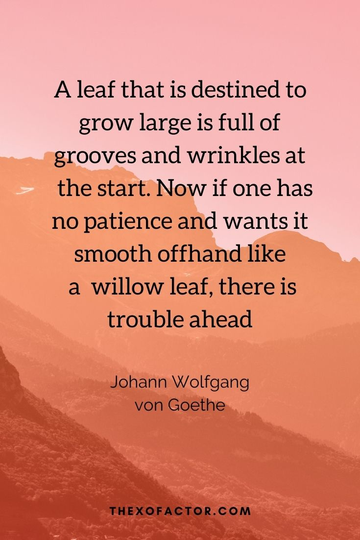 """A leaf that is destined to grow large is full of grooves and wrinkles at the start. Now if one has no patience and wants it smooth offhand like a willow leaf, there is trouble ahead"""" Johann Wolfgang von Goethe"""
