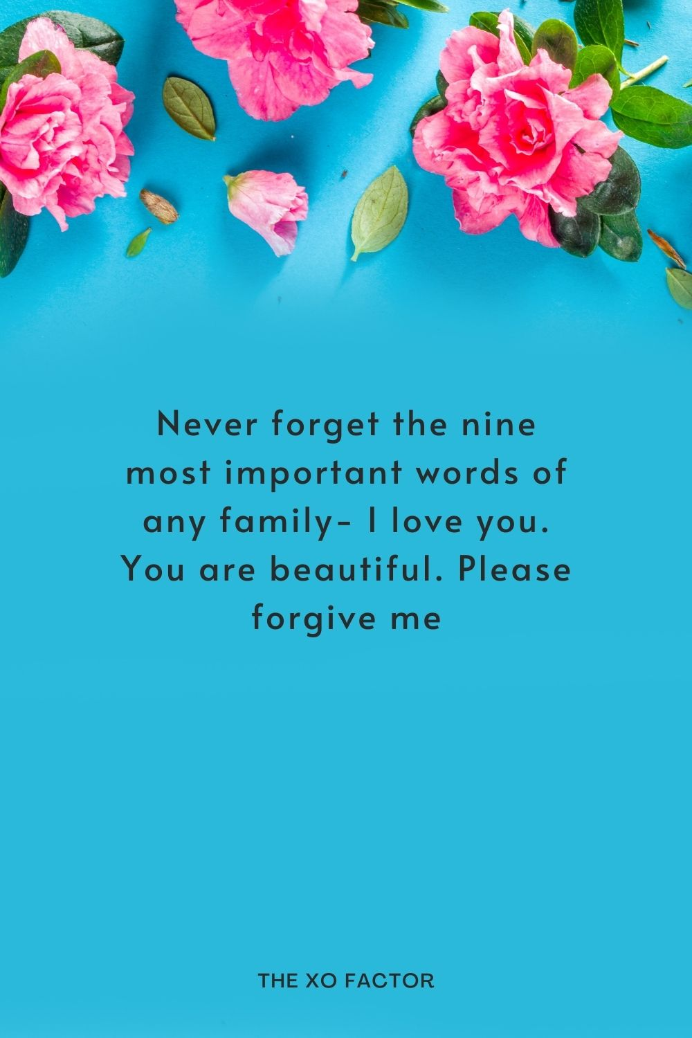 Never forget the nine most important words of any family- I love you. You are beautiful. Please forgive me