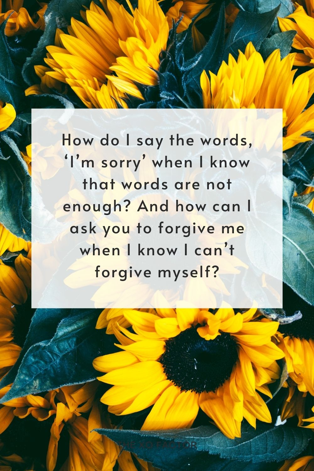 How do I say the words, 'I'm sorry' when I know that words are not enough? And how can I ask you to forgive me when I know I can't forgive myself?