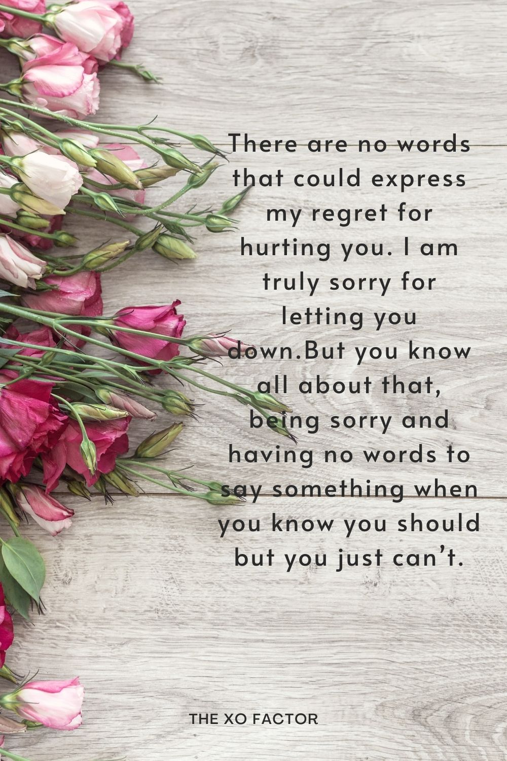 There are no words that could express my regret for hurting you. I am truly sorry for letting you down.But you know all about that, being sorry and having no words to say something when you know you should but you just can't.