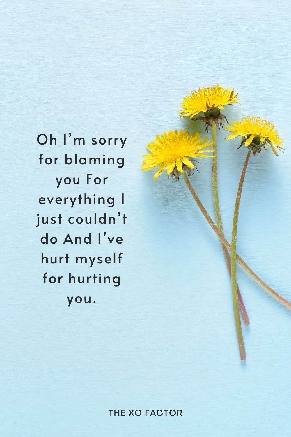 Oh I'm sorry for blaming you For everything I just couldn't do And I've hurt myself for hurting you.