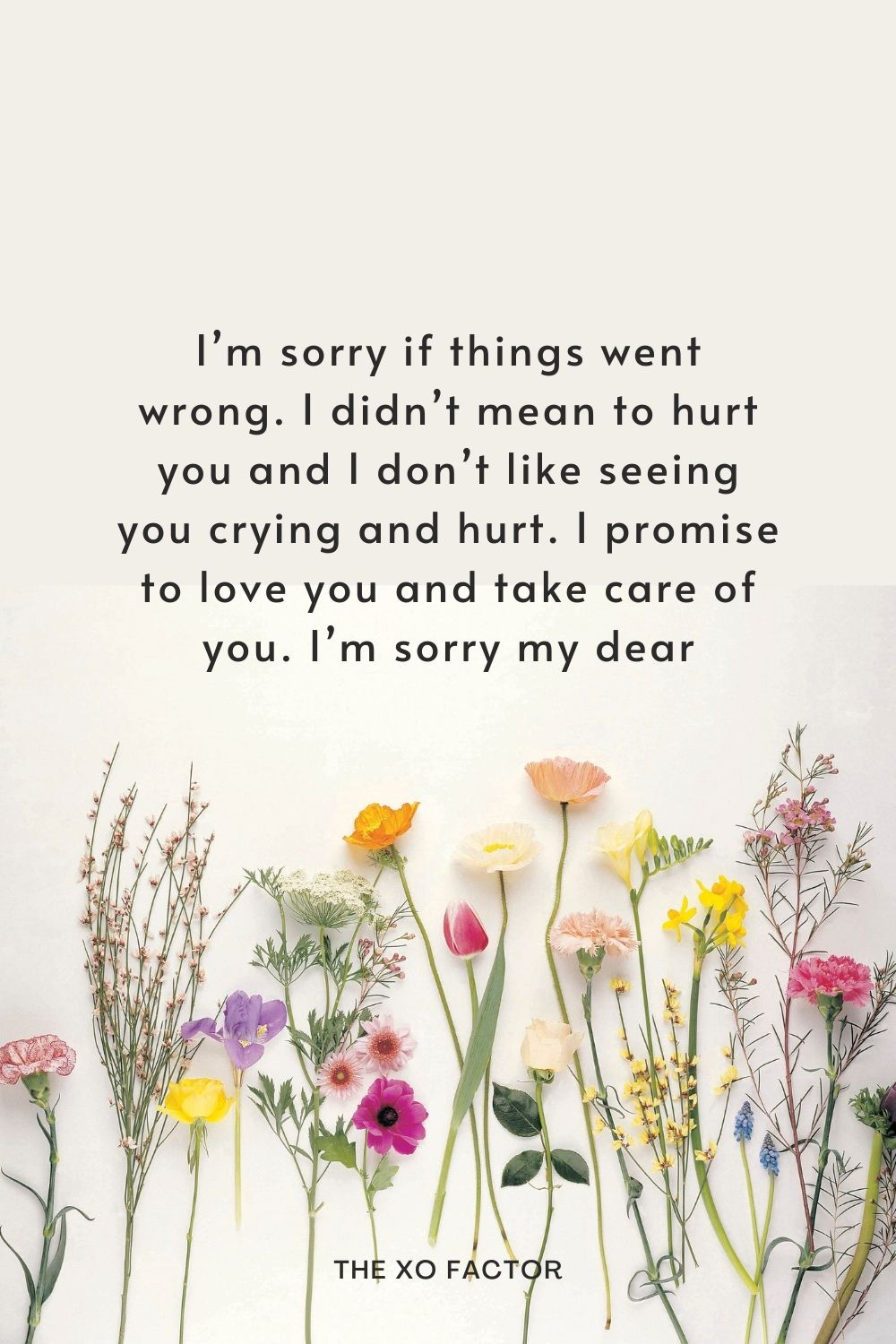 I'm sorry if things went wrong. I didn't mean to hurt you and I don't like seeing you crying and hurt. I promise to love you and take care of you. I'm sorry my dear!