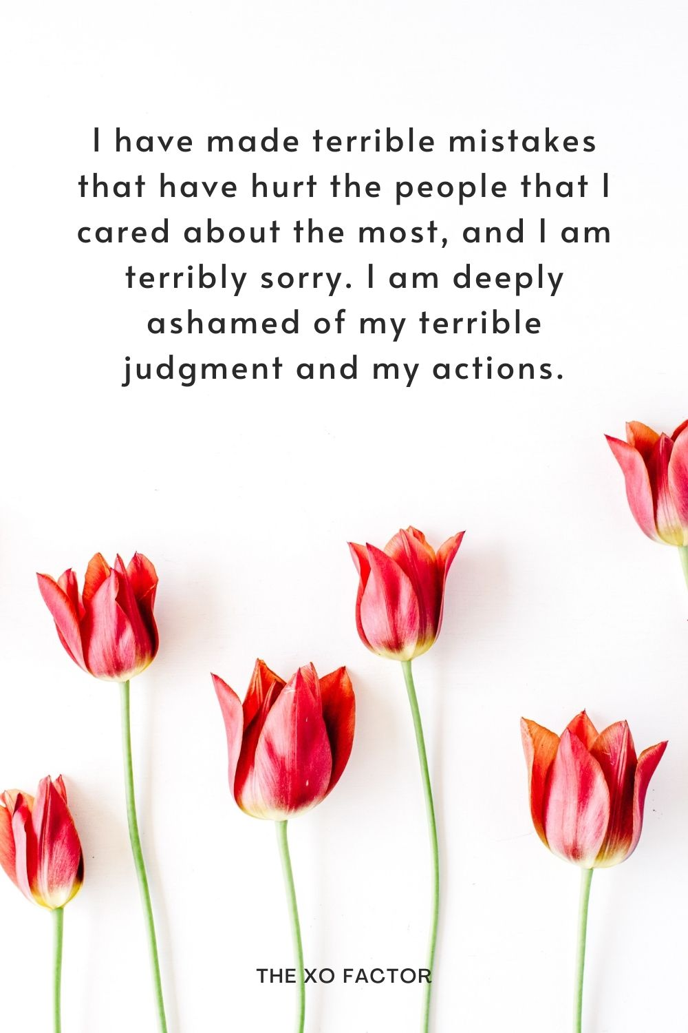 I have made terrible mistakes that have hurt the people that I cared about the most, and I am terribly sorry. I am deeply ashamed of my terrible judgment and my actions.