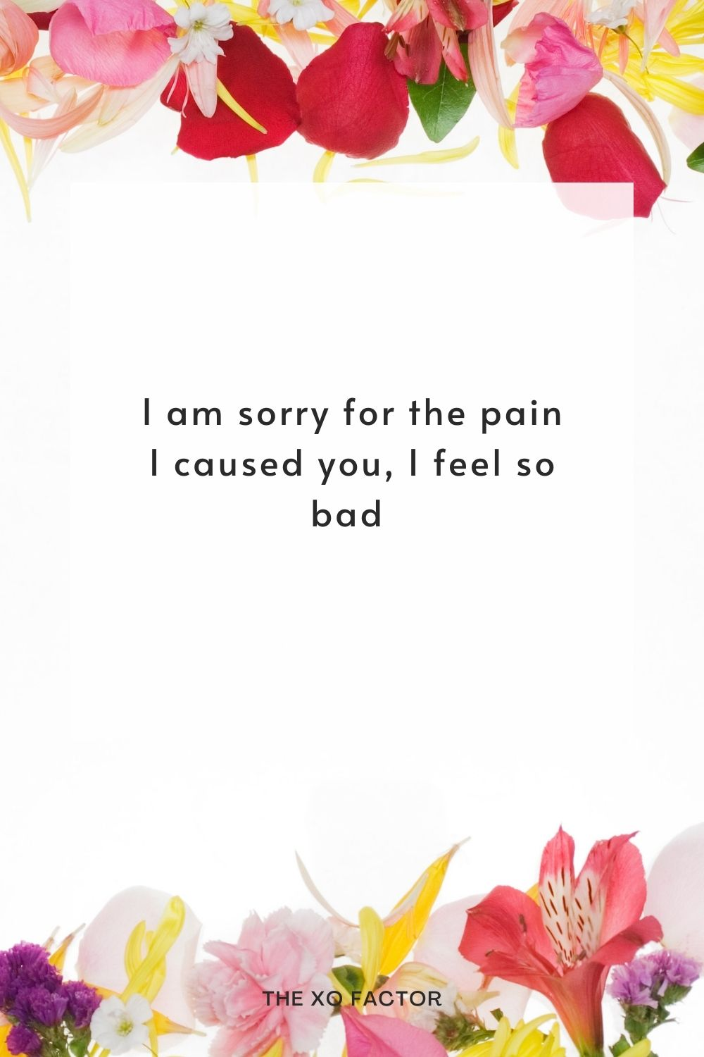I am sorry for the pain I caused you, I feel so bad