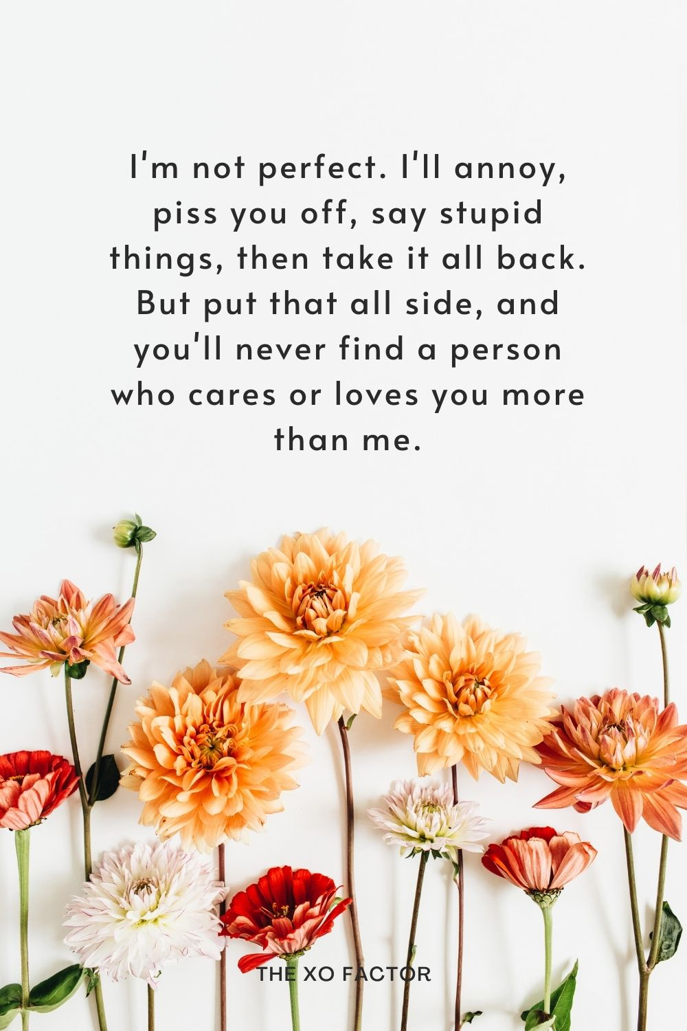 I'm not perfect. I'll annoy, piss you off, say stupid things, then take it all back. But put that all side, and you'll never find a person who cares or loves you more than me.