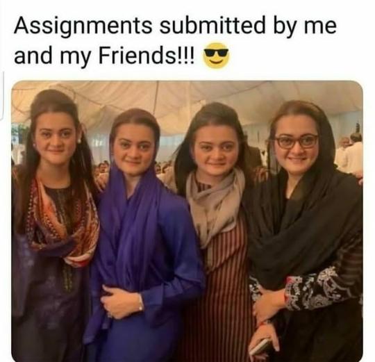 examination memes